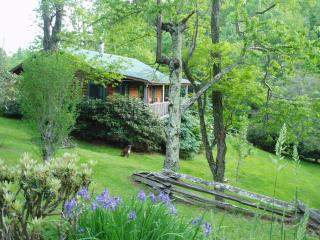 Pear Tree Cottage:Real Log Cabin Dog Friendly WiFi, Boone