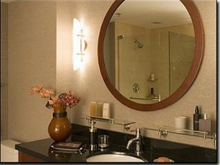 3bd/2.5ba **W**O**W** Heart of Downtown**Stunning, Chicago