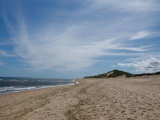 Availability for Aug! Cape Cod - Beautiful!, East Sandwich
