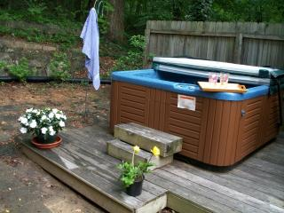 STOCKED TROUT RIVERVIEW  *PRIVATE Hot Tub, Chimney Rock