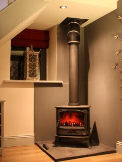 Snug and warm in front of the lovely log burner
