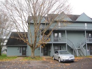 Golf/Cycle/Ski Condo, Ellicottville