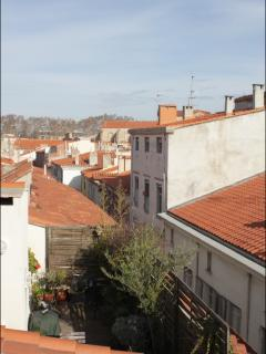 View of the rooftops of Perpignan from the terrace.