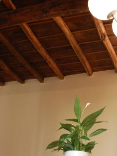 original wooden ceilings in the whole home