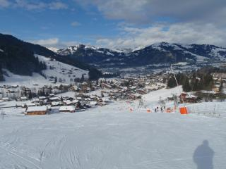 Looking down in to Gstaad from the slopes.