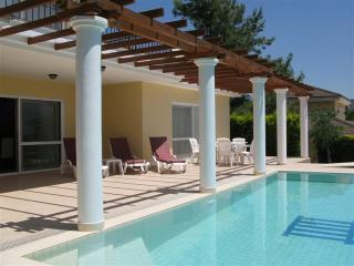 Blees Villa A True Family Escape, Sogucak