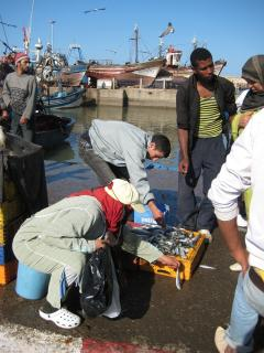 Local fishmarket in the port.