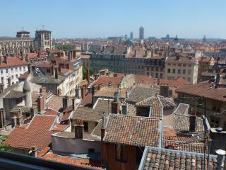 Duplex view&garden 1340 sq historical  Lyon