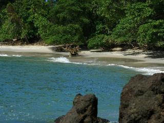 Jungle Creek Alma Pacifica,Gated,A/C,King bed, Parc national Manuel Antonio