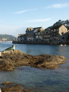 Looe river and iconic Nelson the seal