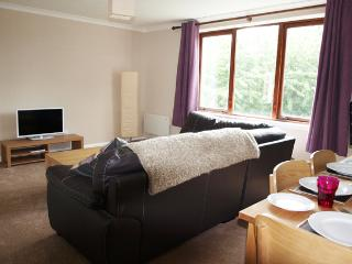 Glasgow Apartment - for business, leisure or SECC