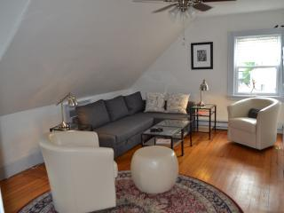 Allston Red House - Large 1 bedroom apartment, Boston