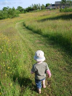 A long walk for little legs through the widlflower meadow and back to the Garden House.