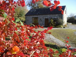 Cae'r Beili Holiday Cottage, Llandovery
