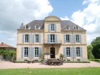 Chateau Les Bardons with pool, Roanne