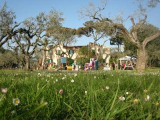 2 bedroom apartment in old Tuscan farmhouse, wi-fi available, Quercianella