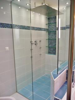 Spacious walk in barrier free shower with massive rainhead and body jets