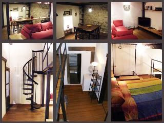 Cozy Florence apartment, sleeps three, wifi access, Florencia