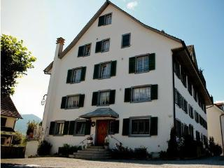 apartment next to Zurich- Zug, Widen