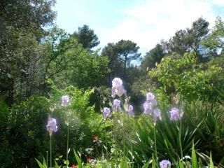 Studio Surrounded by Nature, Bouches-du-Rhone