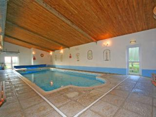 Shared Indoor Heated Swimming Pool