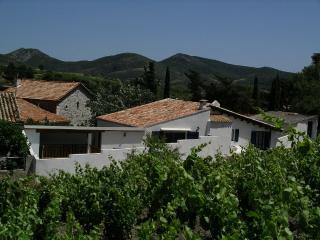The grape pickers house, Cascastel-des-Corbières