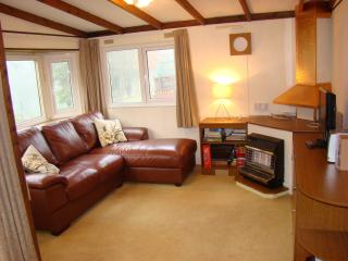 Lakeview Lodge 4 adults+2 kids, Builth Wells