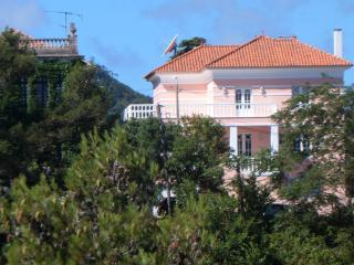 Last minute deal -  Charming Chalet in Sintra