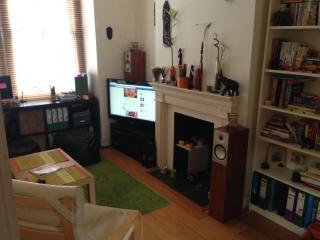 Holiday apartment in Central London/ Zone 2