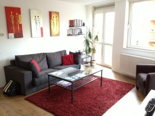 Central Amsterdam Apartment