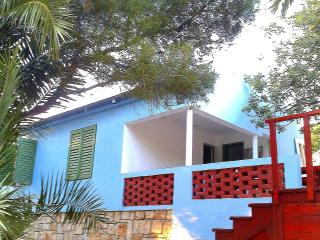 Baby Blue House, Vis