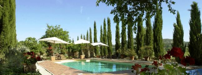 A swimming pool hidden by cypresses and a large variety of roses.