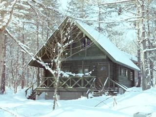 Big Foot Cabin Hakuba, Hakuba-mura