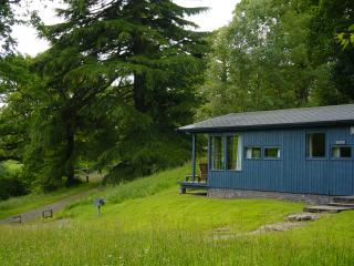Conifer Lodge - Sonja, Crieff