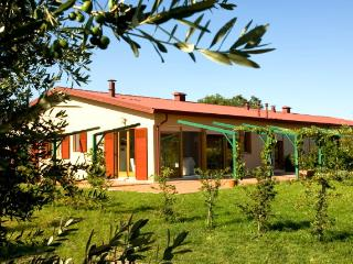 Sunny 3 bedroom Tuscan apartment surrounded by internationally renowned vineyards, shared pool, private garden, Donoratico