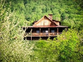 River House | 3 Bedroom | Pet Friendly | Grill, Hot Springs