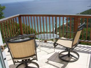 Palmarie Too Cozy Studio with Fabulous Ocean View, St. Thomas