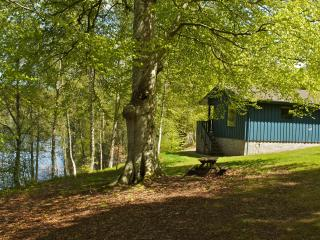 Pine Lodge + Sauna - Lisa, Crieff