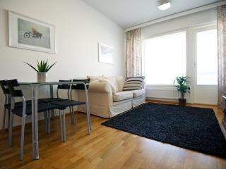 Studio Apartment in the Heart of Turku