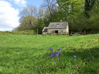 Jackdaw cottage in Spring