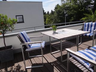 Bright new penthouse apt 103sq, Bonn