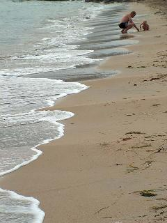 Tranquil Beaches to spend holiday with children