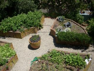 Potager with vegetables on the way