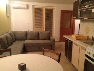 Superb apartment on Island of Pag, Zubovici