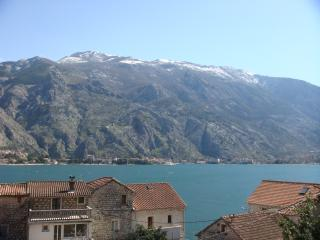 Kotor View, Muo