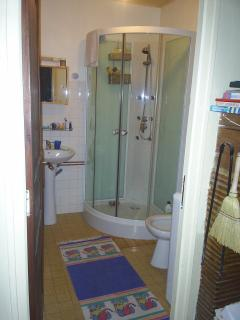 Downstairs shower/utility . Separate toilet.