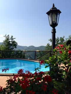 View from the terrace across the pool.