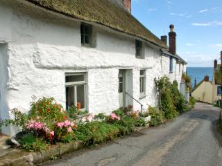 The Cot, Cadgwith