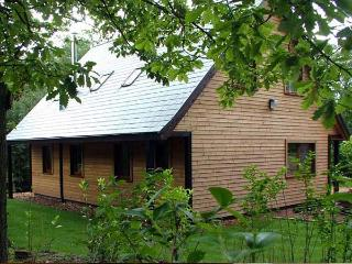 WOOTTON, quality woodland lodge with hot tub, close to Alton Towers, Ref 913349, Farley