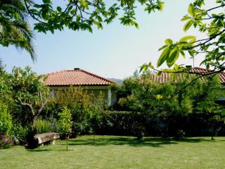 Garden and bungalows
